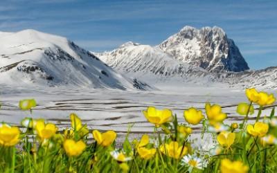 Pasqua nel Piccolo Tibet