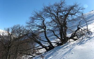 Monte Mileto del Morrone