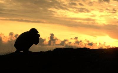 Dal tramonto all'alba sulla Laga