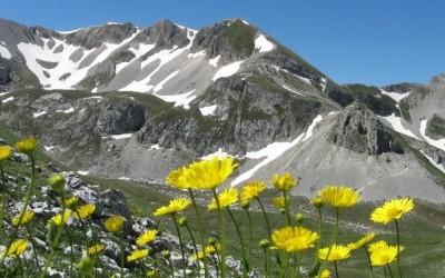 La Val Maone