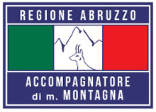 logo amm bandiera small