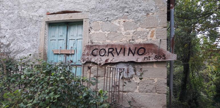 corvino_05.jpg